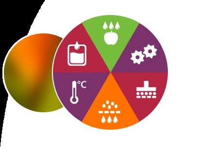Etapes de fabrication d'un jus de fruits